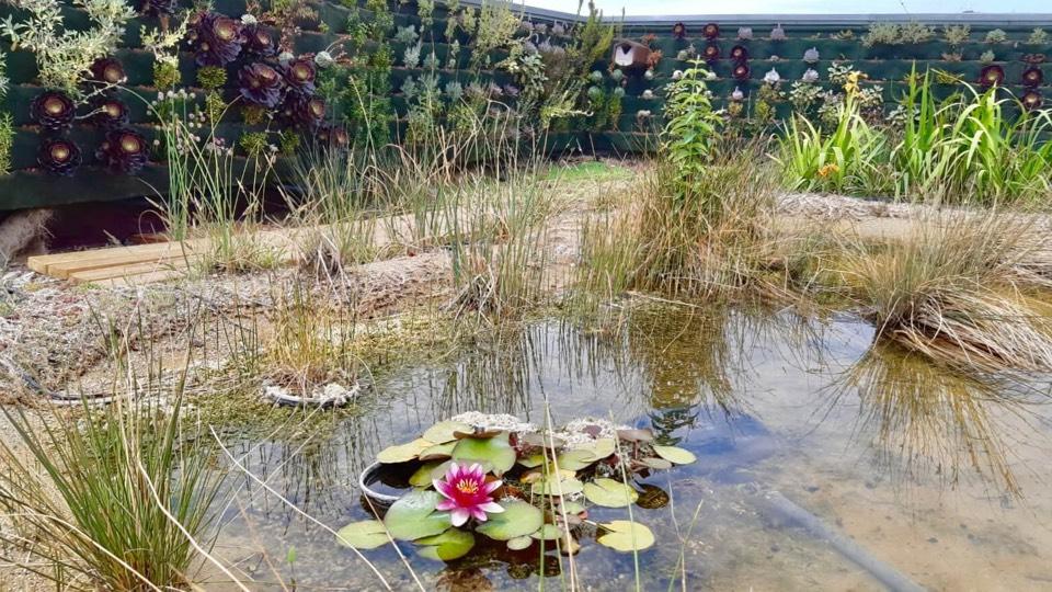 Vodní prvek ekologické budovy