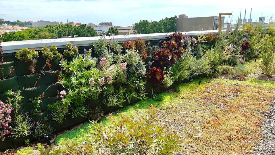 Zelená střecha na městské budově