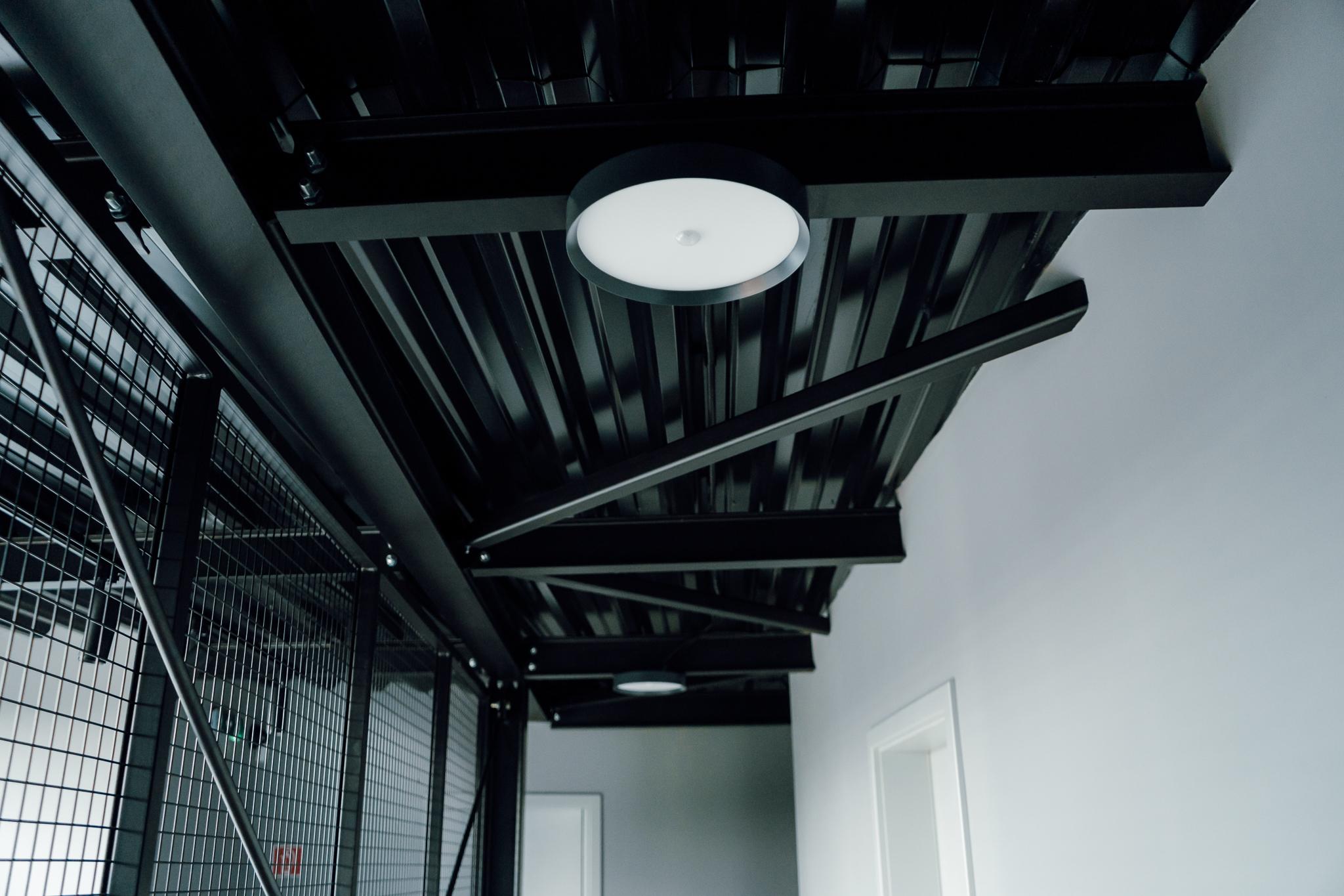 Stropní LED světlo RGBW Tree umístěné na stropě
