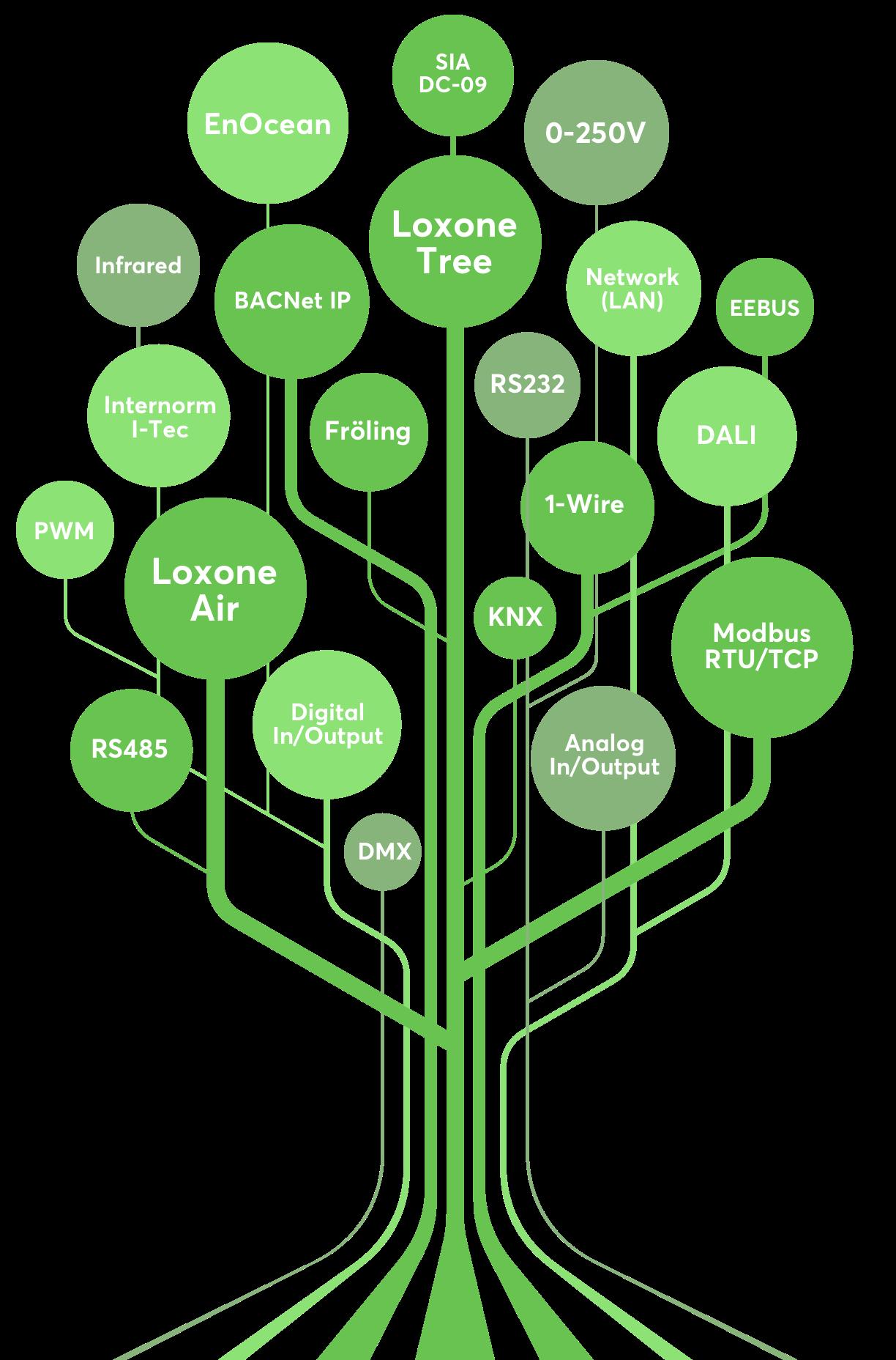 Strom s názvy rozhraní