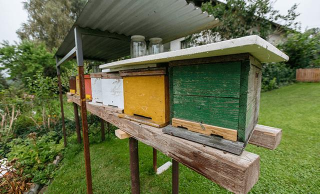 PH_Rammel-Referenz-Bienen-Nachrüst-Smart-Home