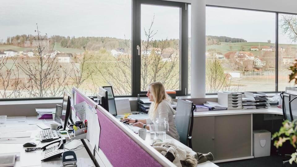 Büroraum der Firma Träumeland
