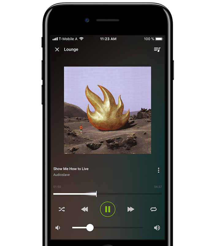 Loxone Smart Home App - Music
