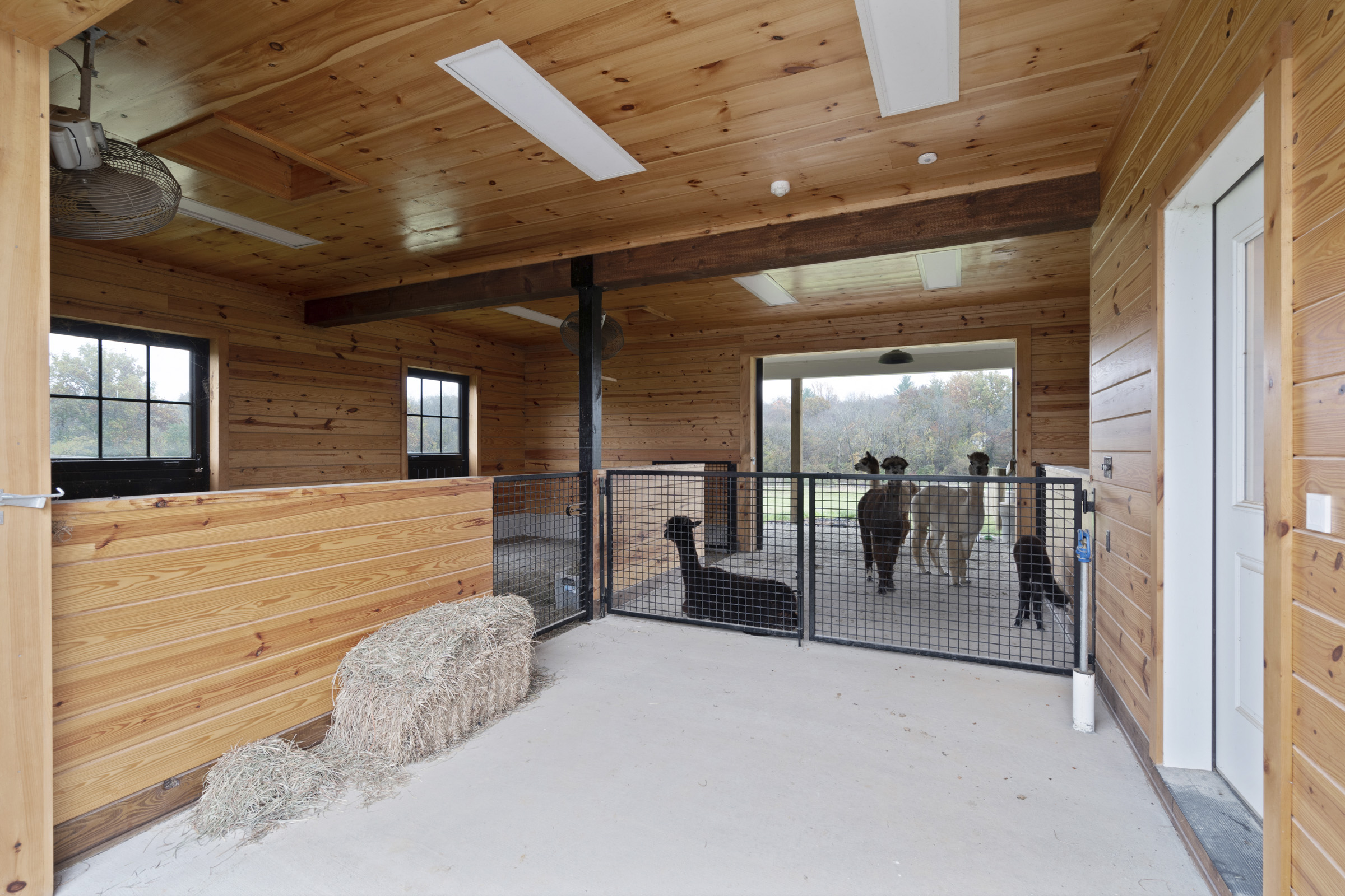 Alpaca barn with smart home products