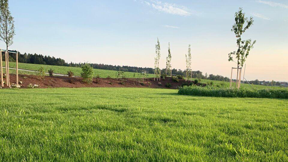 Irrigazione automatica del proprio giardino